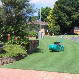 Protea lawnmower for home use mowing a garden