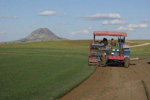 Tractor Mount Sod harvester